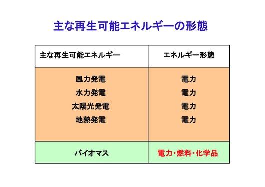 %E5%86%8D%E7%94%9F%E5%BD%A2%E6%85%8B%202009.11.23.jpg